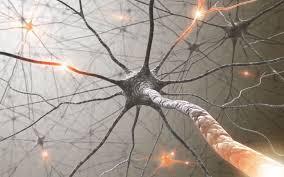 neirologija